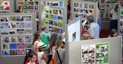 Ausstellung-2016